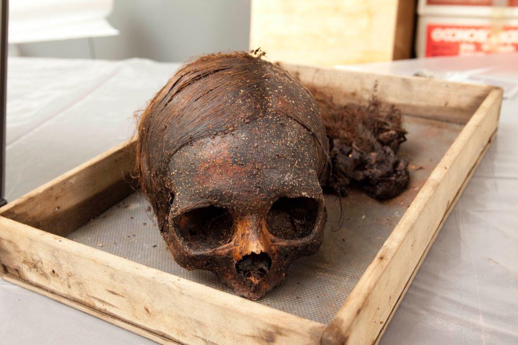 mc roberts iron coffin mummy skull