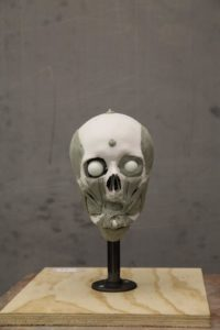 mary camp iron coffin skull